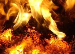 burning pellet