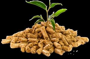 img_pellets_plant