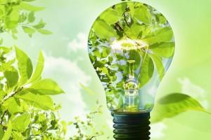 Како да бидете поекономични, а воедно и да ја заштитите планетата Земја?